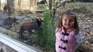 I love that cheesy grin, and the red panda is cute too.
