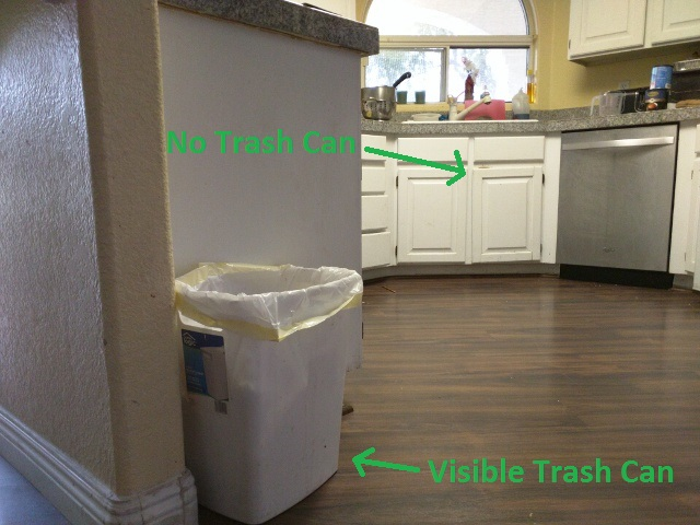 Crash Wife - Trash Can Placement Annotated