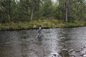 Few things are more serene than a fly fisherman executing his craft.